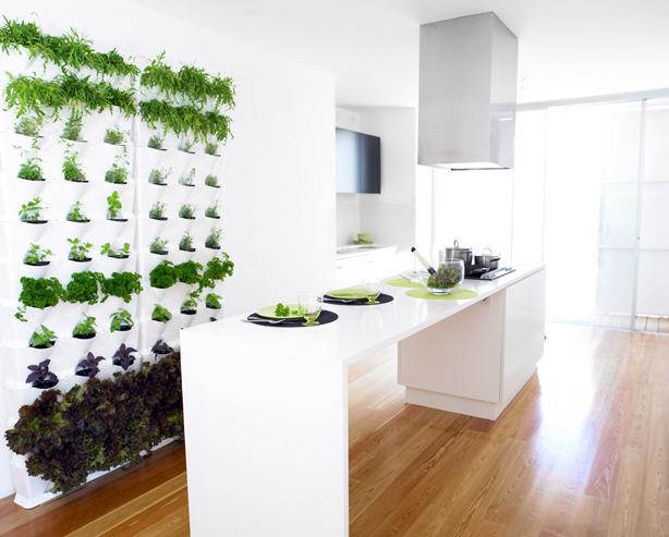 Minigarden - Jardines Verticales en la Cocina