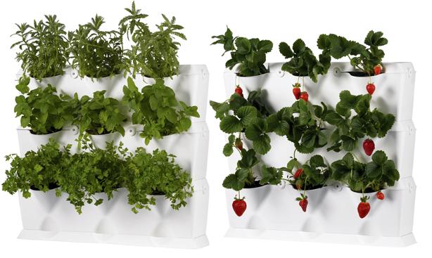 Ideas para construir jardines verticales - Macetas para jardin vertical ...