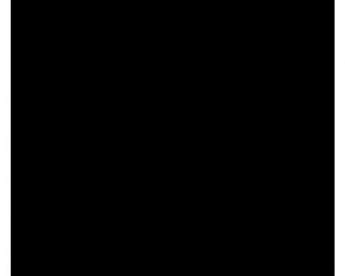 Creativo-de-la-Semana-Zipper-500x7411