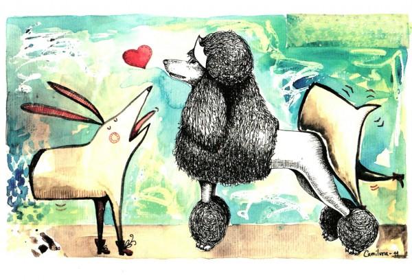 Las hembras de Perro-Picado (Ilustración: Camiluna, Ecuador)