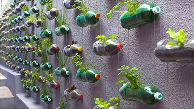 Jardín con botellas recicladas