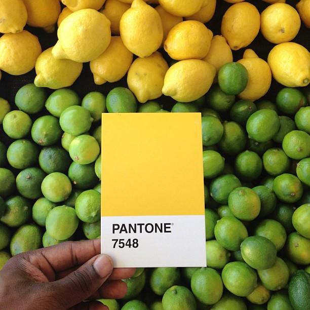 Pantone 7548 por Paul Octavius