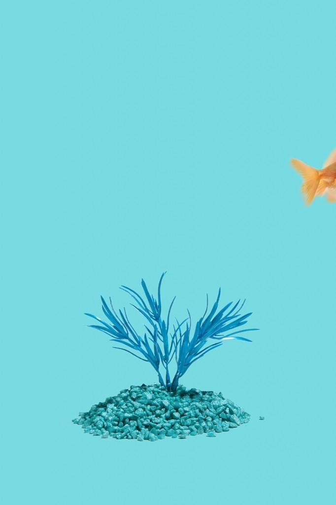 Crayola Theory | Aquamarine - #78DBE2