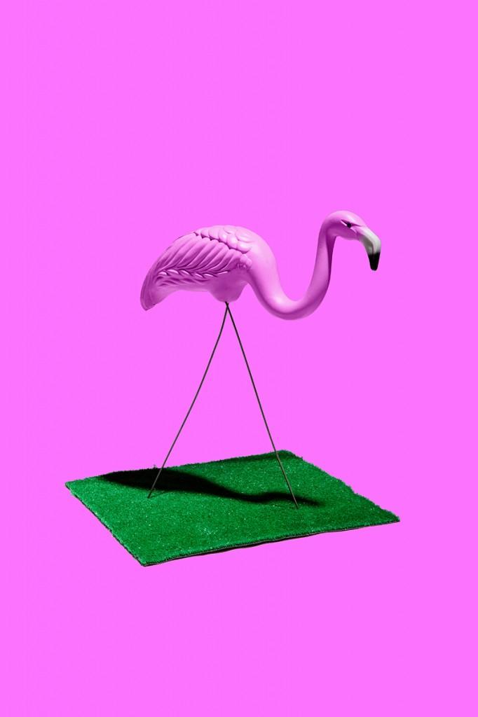 Crayola Theory | Pink Flamingo - #FC74FD