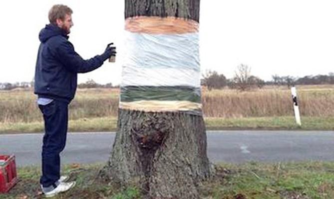 ¡Este árbol está levitando!