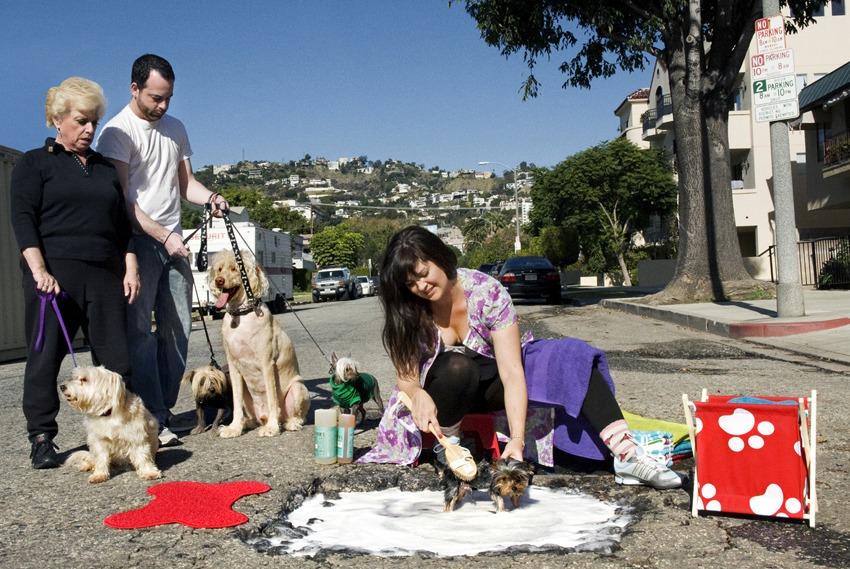 Creative Potholes - Los Angeles, USA - Todos los Derechos Reservados mypotholes.com